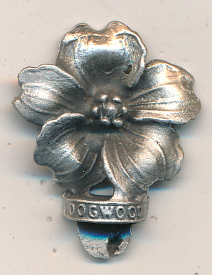 BC Dogwood